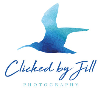 Branding and logo design for a photographer, Clicked by Jill.